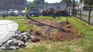 Rain garden, in process of being planted with native plants