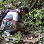 Young girl wearing colorful backpack kneels to examine forest floor in Ecuadorian nature preserve