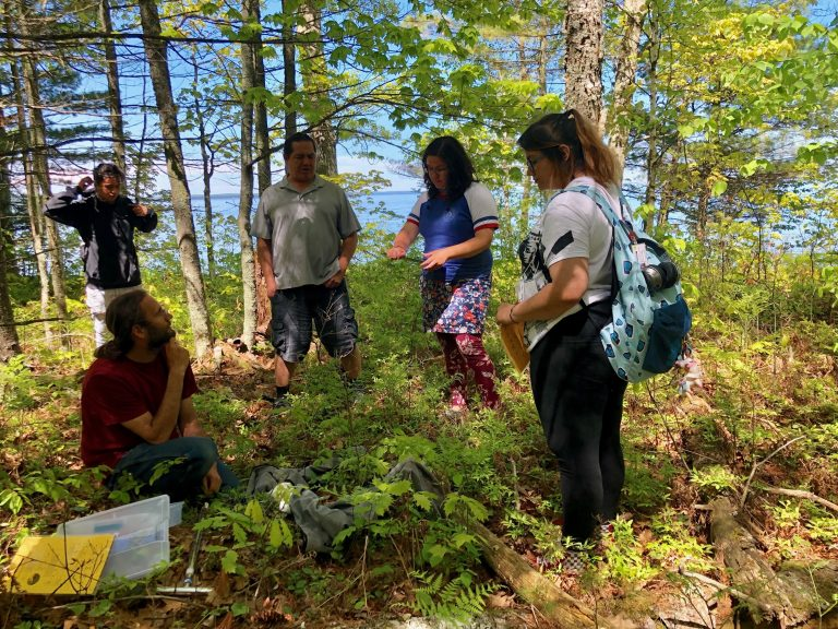 five participants gather in circle, discussing groundlayer vegetation of forest floor, with Lake Superior in the background