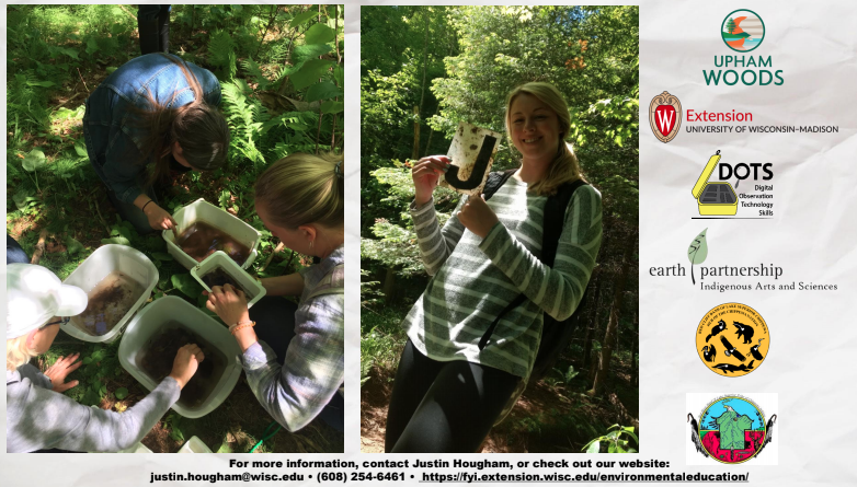 Scientific story shows participants examining macroinvertebrates in woodland