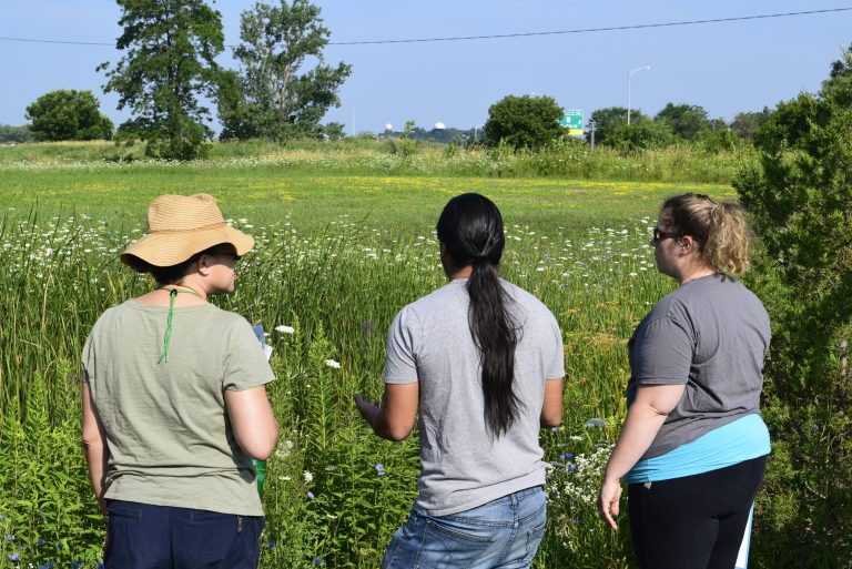 People stand looking at prairie with their backs to camera